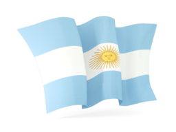 argentina waving flags