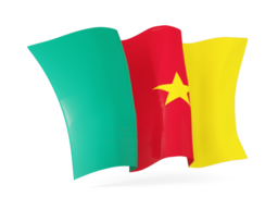 cameroon waving flags