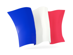 france waving flags