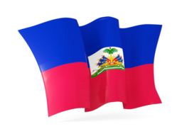 haiti waving flags