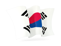 korea south waving flag 256