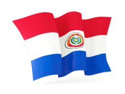 paraguay waving flags