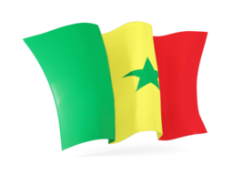 senegal waving flags