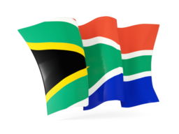 south africa waving flags